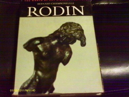 9780500180693: Rodin