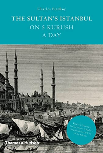 9780500251935: The Sultan's Istanbul on 5 Kurush a Day