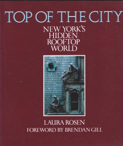 9780500276013: Top of the City: New York's Hidden Rooftop World