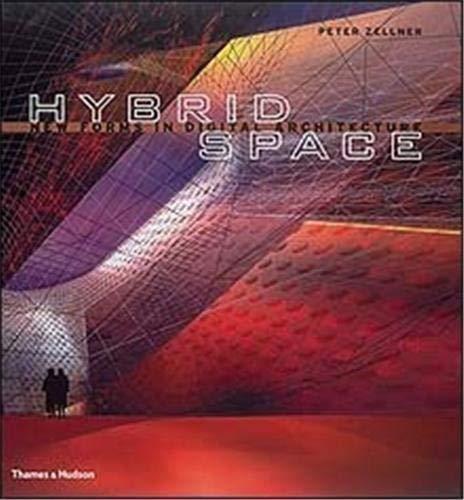9780500282564: Hybrid Space