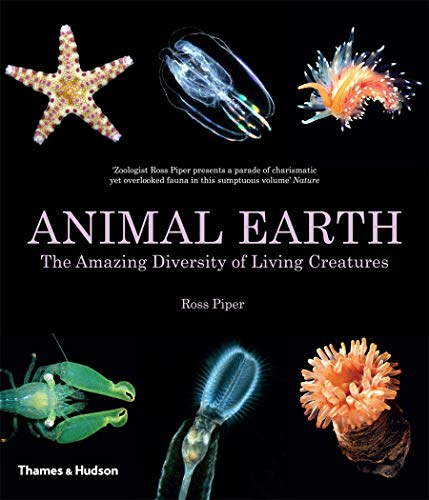 9780500291658: Animal Earth: The Amazing Diversity of Living Creatures