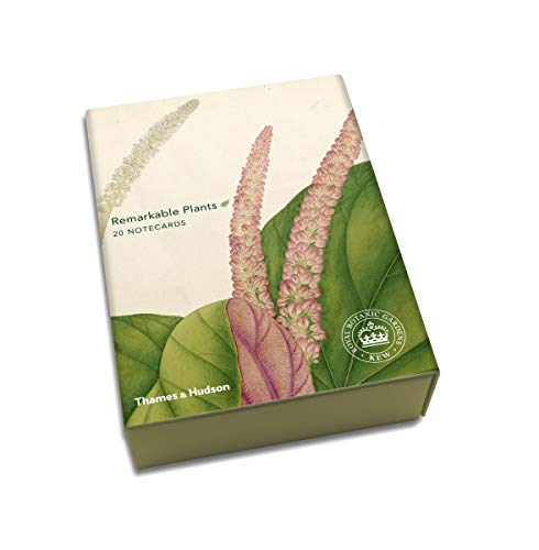 9780500420317: Remarkable Plants: Notecards: Box of 20 (Thames & Hudson Gift)