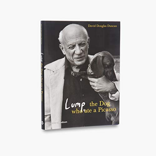 9780500512951: Lump : the Dog Who Ate a Picasso /Anglais