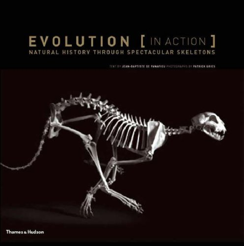 9780500513705: Evolution (in Action): Natural History Through Spectacular Skeletons