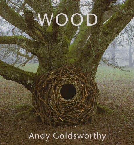 9780500515174: Wood: Andy Goldsworthy