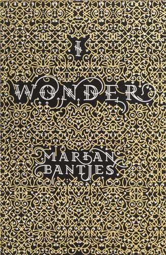 9780500515297: Marian Bantjes I Wonder Typography & Lettering /Anglais