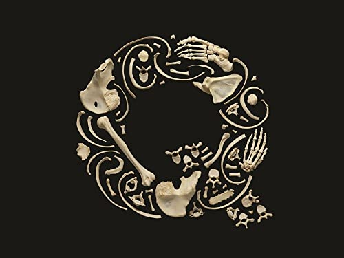9780500517222: Typorama: The Graphic Work of Philippe Apeloig