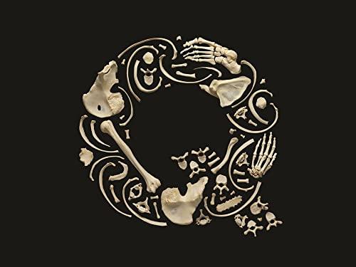 9780500517222: Typorama: The Graphic Work of Philippe Apeloig