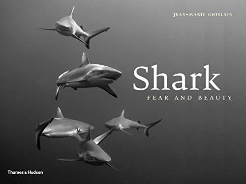 9780500517734: Shark Fear & Beauty /Anglais