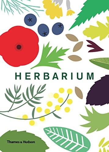 herbarium stacey robyn hay ashley