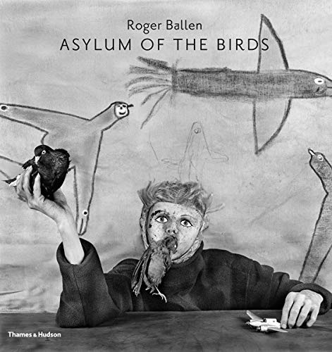 9780500544297: Asylum of the Birds