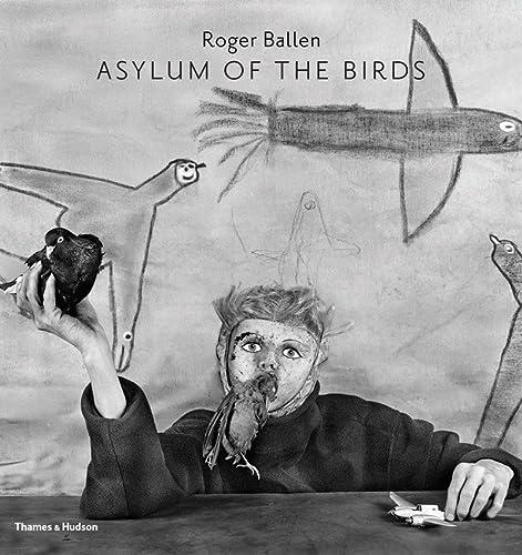 9780500544297: Asylum of the Birds