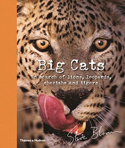 9780500650042: Big Cats: In Search of Lions, Leopards, Cheetahs, and Tigers