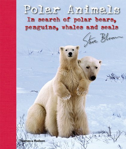 9780500650110: Polar Animals: In Search of Polar Bears, Penguins, Whales and Seals