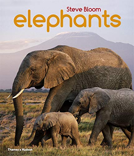 9780500650554: Elephants: A Book for Children (1st Time Paperback)