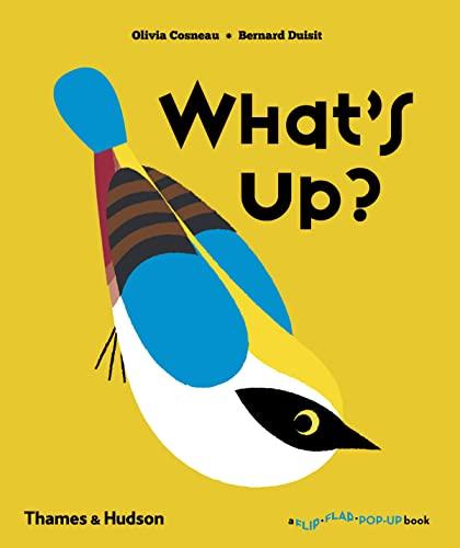9780500650929: What's Up? (Flip Flap Pop-Up)