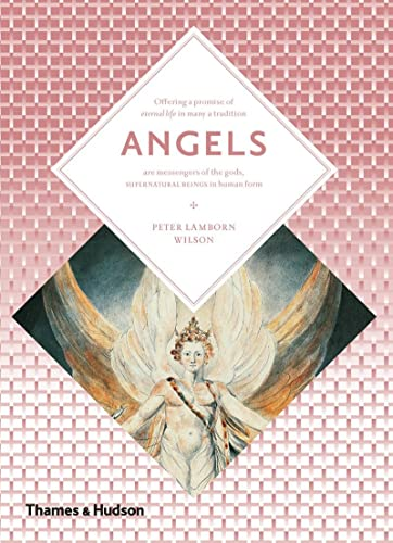 9780500810576: Angels (Art and Imagination)