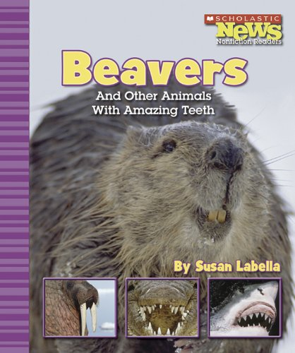 9780516249308: Beavers And Other Animals With Amazing Teeth (Scholastic News Nonfiction Readers)
