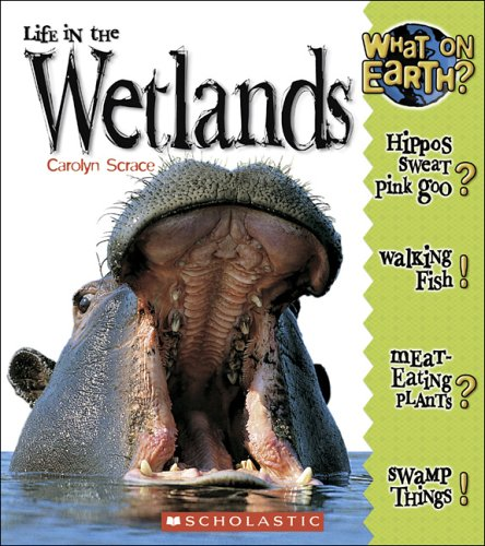 9780516253183: Life In The Wetlands (What on Earth)
