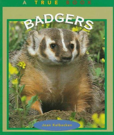 9780516260938: Badgers (True Book)