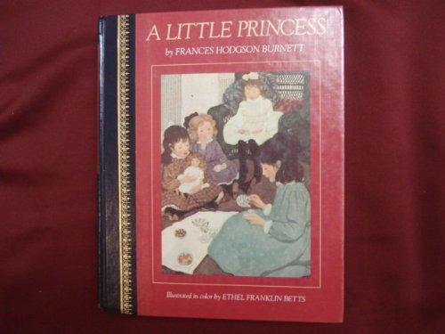 Little Princess Childrens Classics: Burnett, Frances Hodgson