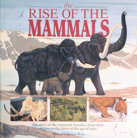 9780517025611: Rise of the Mammals