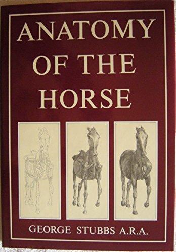 9780517033029: Anatomy of the Horse