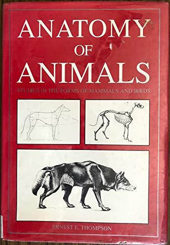9780517050248: Anatomy of Animals