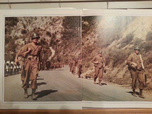 9780517065662: Historical Fact-World War11o/P