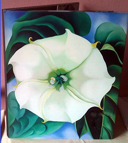 9780517153222: Georgia O'Keeffe: One Hundred Flowers