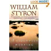 9780517164501: A Tidewater Morning
