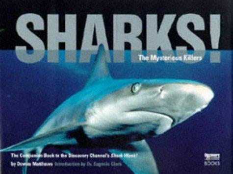 Shark! (Discovery Channel Books): Downs Matthews