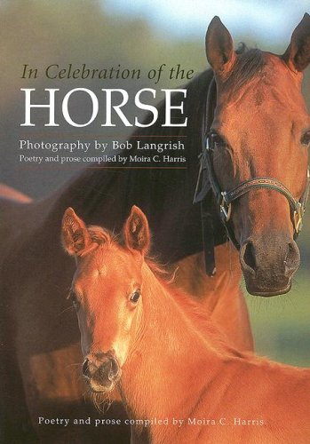 9780517230091: In Celebration of the Horse