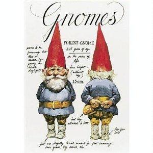9780517270738: Gnomes (English and Dutch Edition)