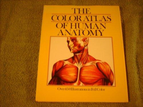 The Color Atlas Of Human Anatomy By Vannini Vanio And Giuliano