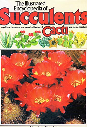 The Illustrated Encyclopedia of Succulents (Salamander Book) (051753309X) by Gordon Rowley