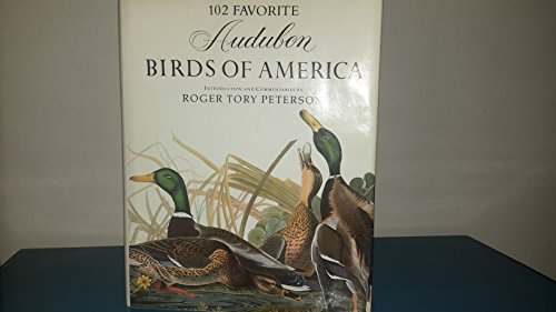 Favorite Audubon Birds of America