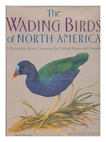 The Wading Birds of North America: Eckert, Allan W.