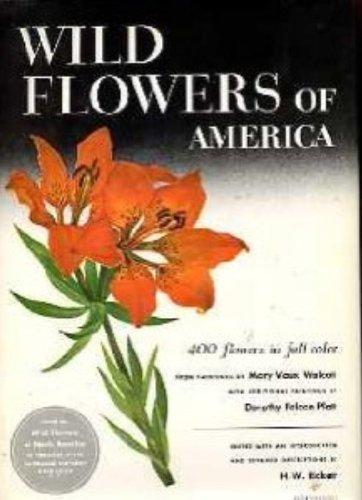 Wild Flowers Of America: H.W. Rickett, Mary Vaux Walcott (Painter), Dorothy Falcon Platt (Painter)