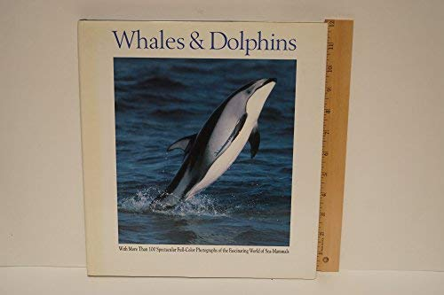 9780517690925: Whales and Dolphins