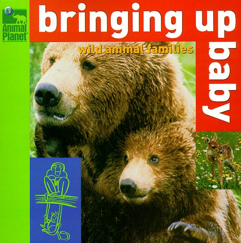 9780517800072: Bringing Up Baby: Wild Animal Families (Animal Planet)