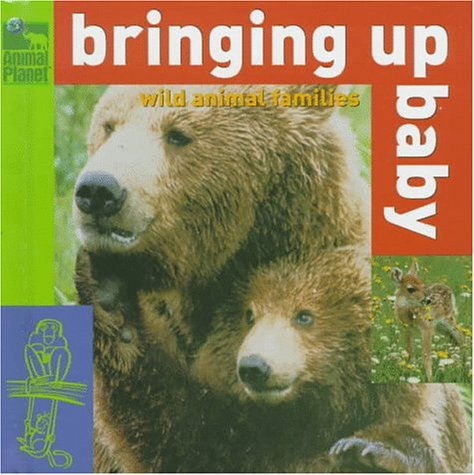 9780517800089: Bringing Up Baby: Wild Animal Families (Animal Planet)