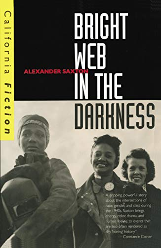 9780520209312: Bright Web in the Darkness (California Fiction)