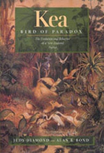 9780520213395: Kea, Bird of Paradox: The Evolution and Behavior of a New Zealand Parrot