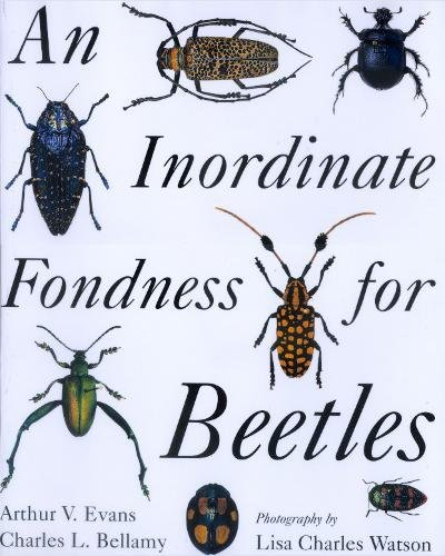 9780520223233: An Inordinate Fondness for Beetles