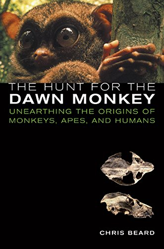 9780520233690: The Hunt for the Dawn Monkey: Unearthing the Origins of Monkeys, Apes, and Humans