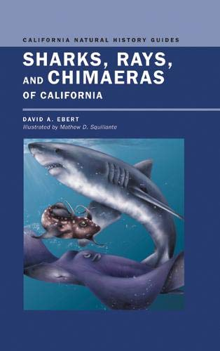 9780520234840: Sharks, Rays, and Chimæras of California (California Natural History Guides)