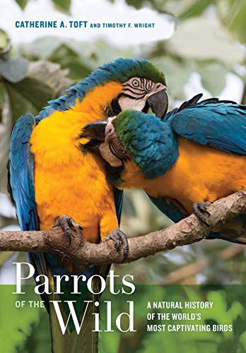 9780520239258: Parrots of the Wild: A Natural History of the World's Most Captivating Birds
