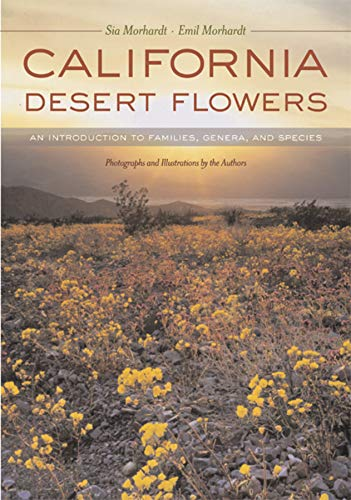 9780520240032: California Desert Flowers: An Introduction to Families, Genera, and Species (Phyllis M. Faber Books)