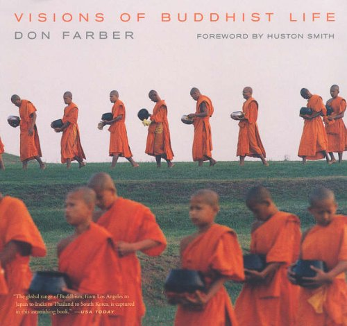 9780520244795: Visions of Buddhist Life